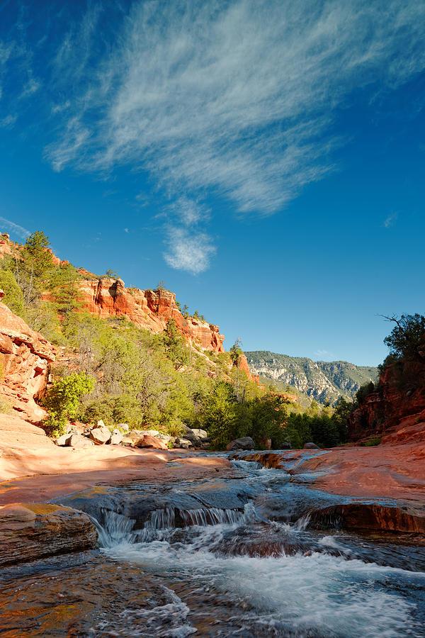 Oak Creek Photograph - Free Flow At Oak Creek by Silvio Ligutti