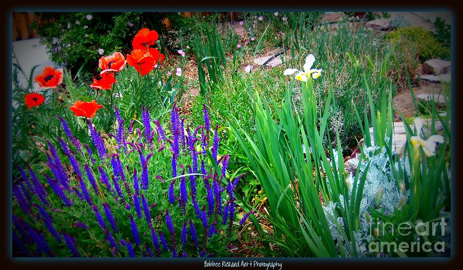 Wildflowers Photograph - Free To Be Wild by Bobbee Rickard