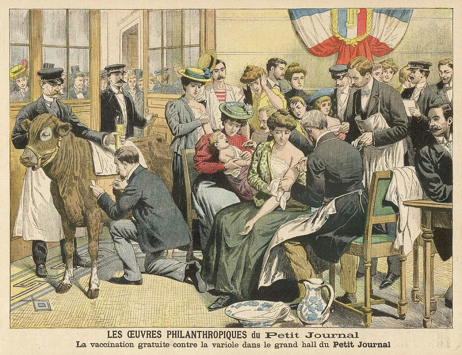Free Drawing - Free Vaccinations Against  Smallpox by Mary Evans Picture Library
