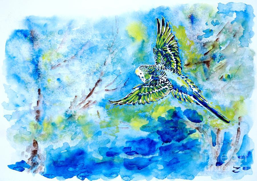 Budgerigar Painting - Free by Zaira Dzhaubaeva
