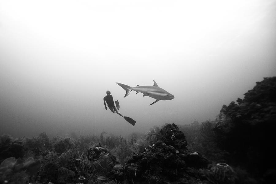 Freediving Photograph - Cara A Cara by One ocean One breath