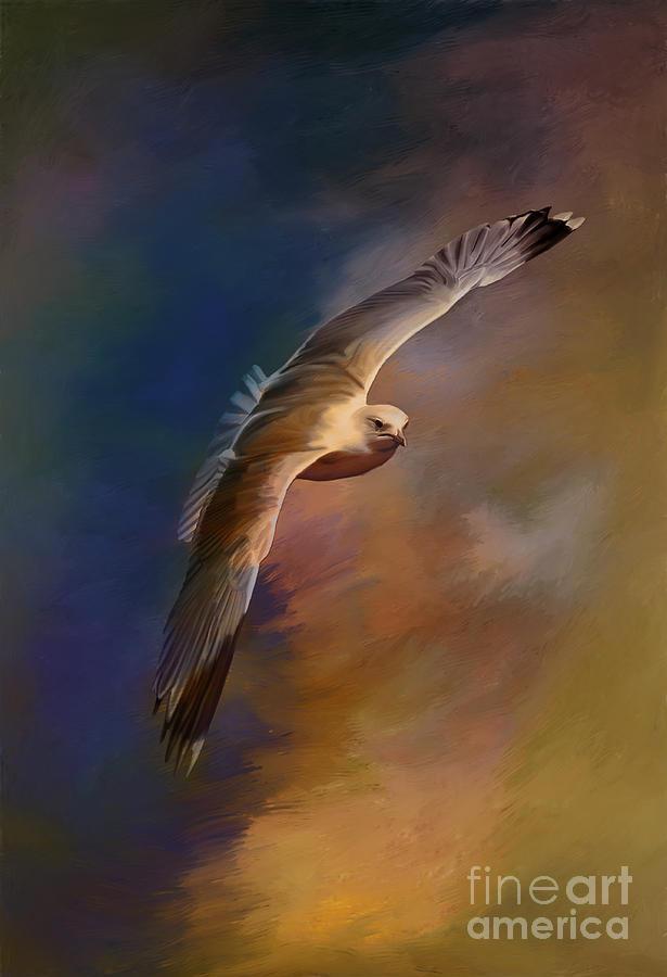 Bird Painting - Freedom....  by Andrzej Szczerski