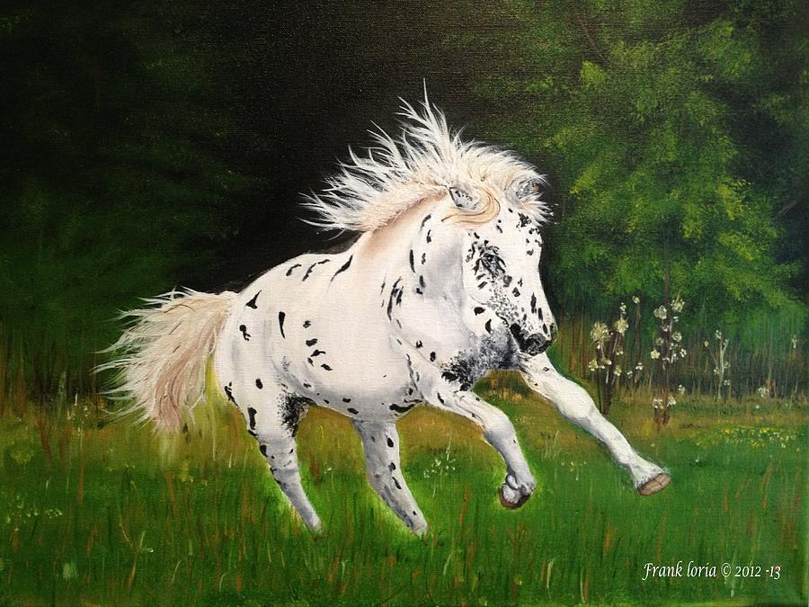 Appaloosa Painting - Freedom by Frank Loria