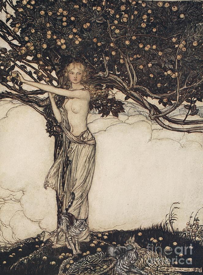 Arthur Rackham Drawing - Freia The Fair One Illustration From The Rhinegold And The Valkyrie by Arthur Rackham