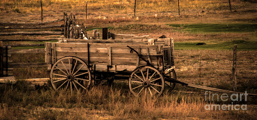 Freight Wagon Photograph - Freight Wagon by Robert Bales