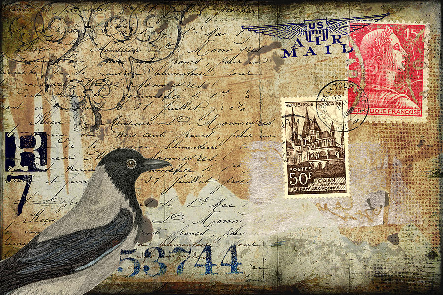 Postcard Photograph - French Bird Postcard by Carol Leigh
