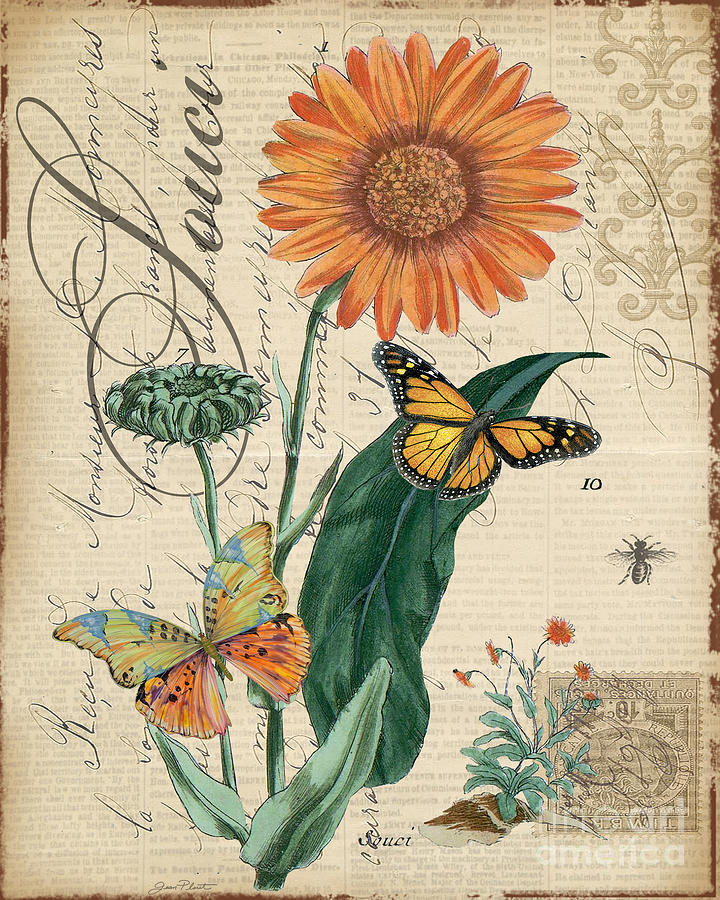 Flower Mixed Media - French Botanical-souci by Jean Plout