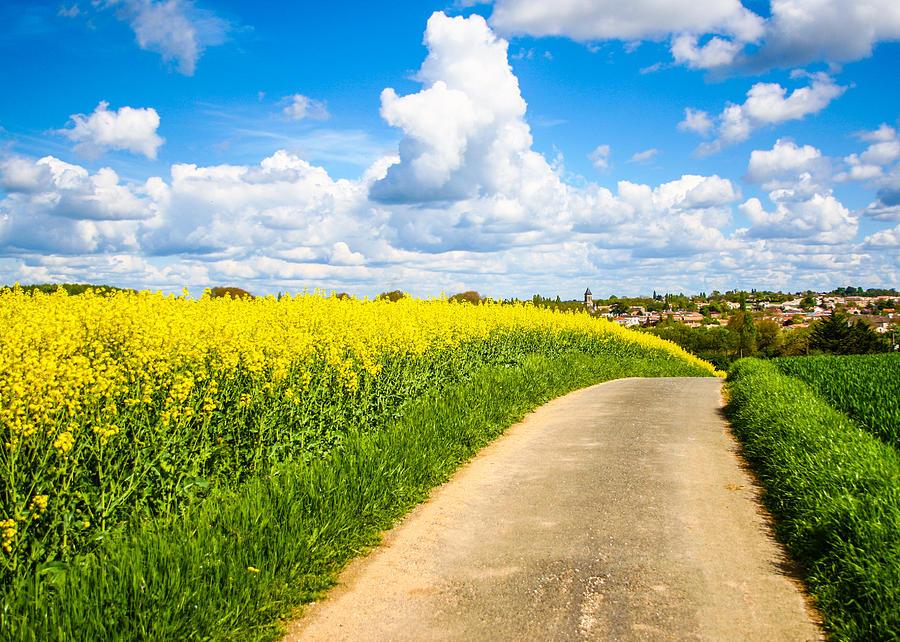Countryside Photograph - French Countryside by Nila Newsom