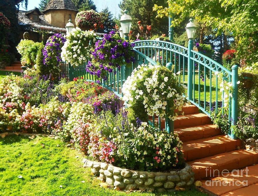 French Garden Bridge Photograph by Katie Maddox