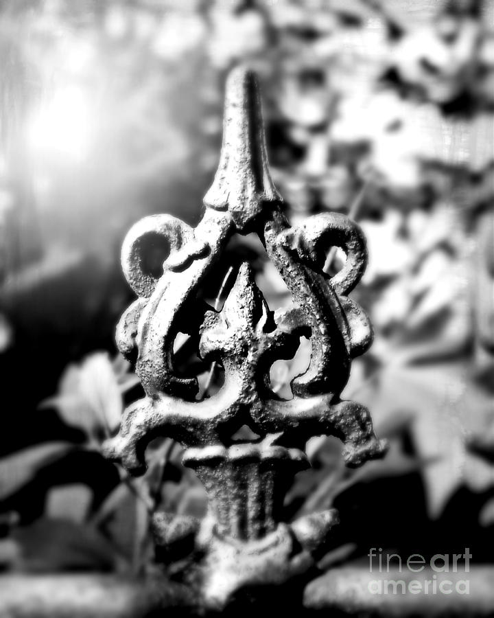Fence Photograph - French Iron by Perry Webster