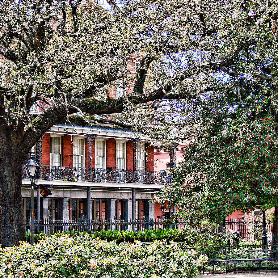 New Photograph - French Quarter Spring by Olivier Le Queinec