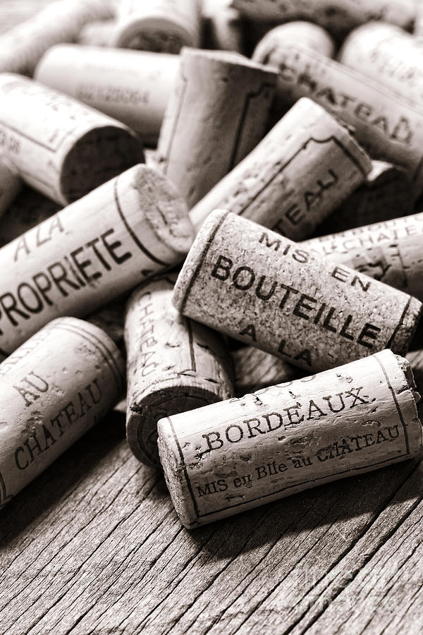 Corks Photograph - French Wine Corks by Olivier Le Queinec