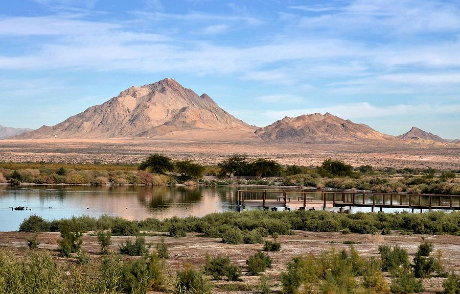 Landscape Photograph - Frenchman Mountain And Oasis by Janelle Losoff