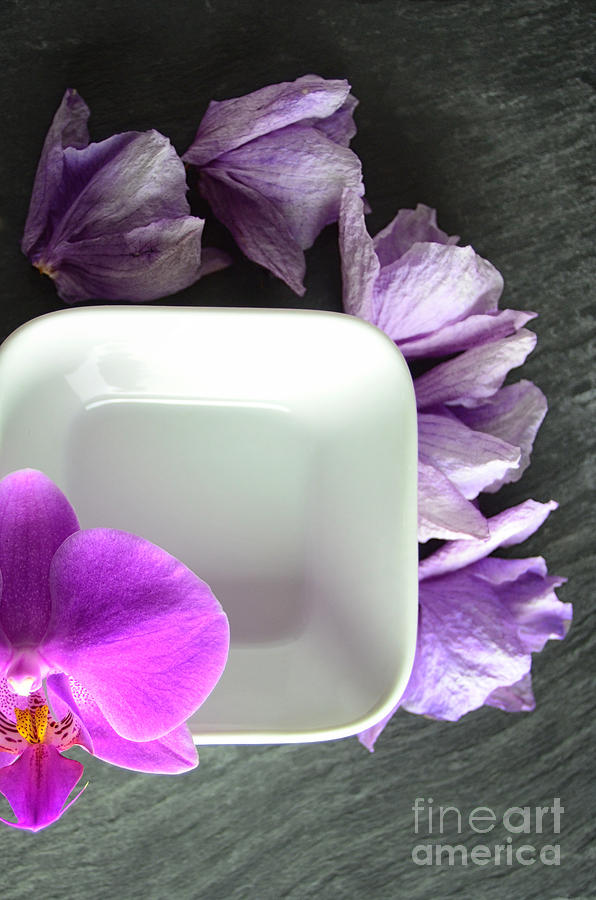 Fresh And Dried Pink Orchids On Black Slate Photograph