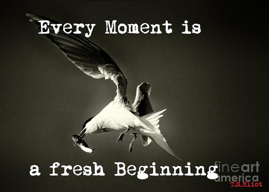 Fresh Beginning by Karla Weber