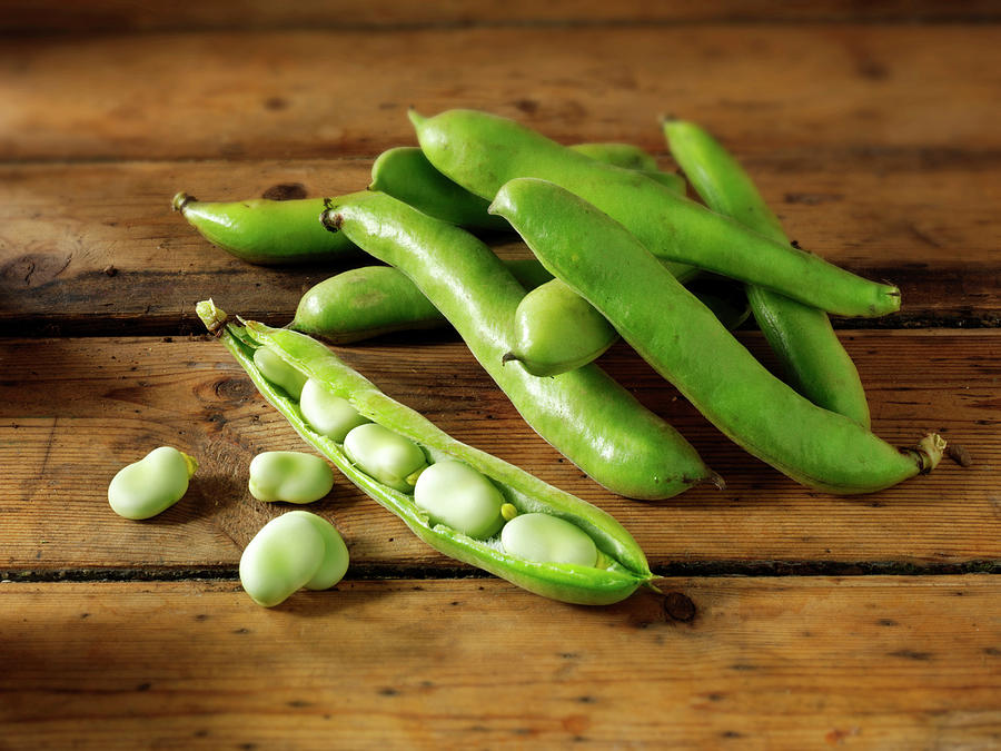 Fresh Broad Beans In Their Pods Photograph by Paul Williams - Funkystock