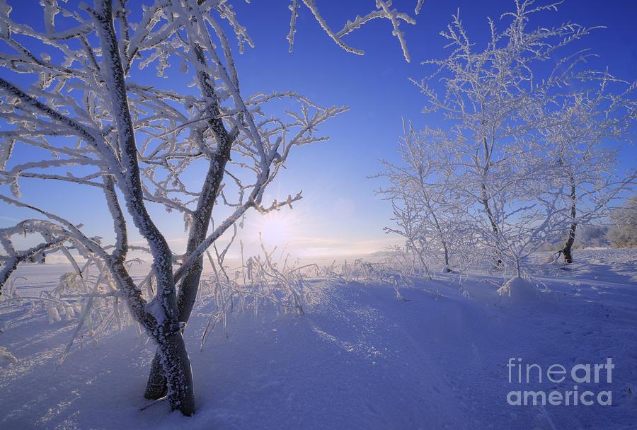 Fresh Cold Air Photograph By Dan Jurak
