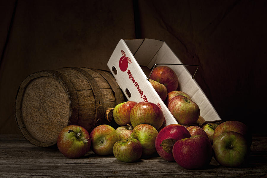 Apple Photograph - Fresh From The Orchard I by Tom Mc Nemar