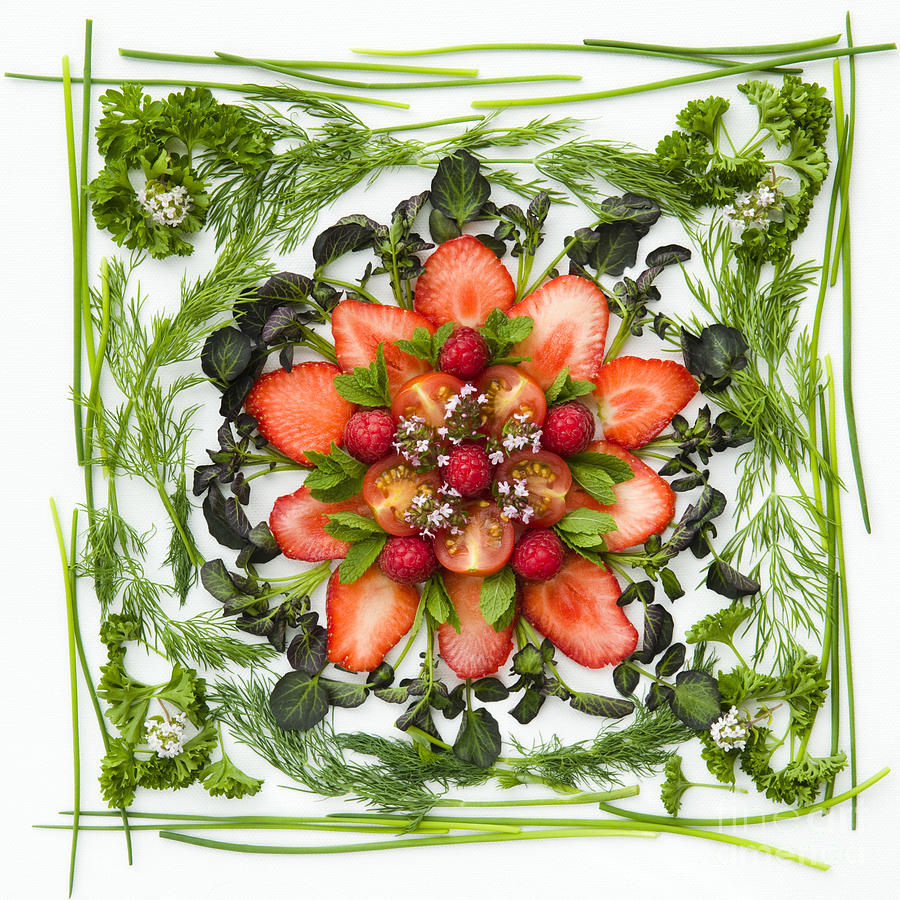 Arranged Photograph - Fresh Fruit Salad by Anne Gilbert