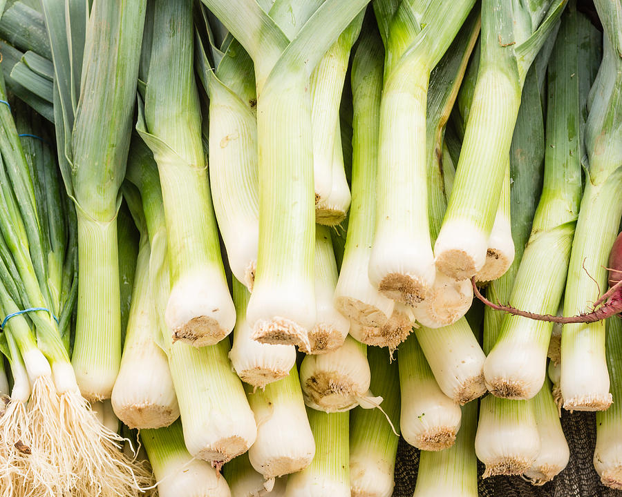 Agriculture Photograph - Fresh Leeks by John Trax