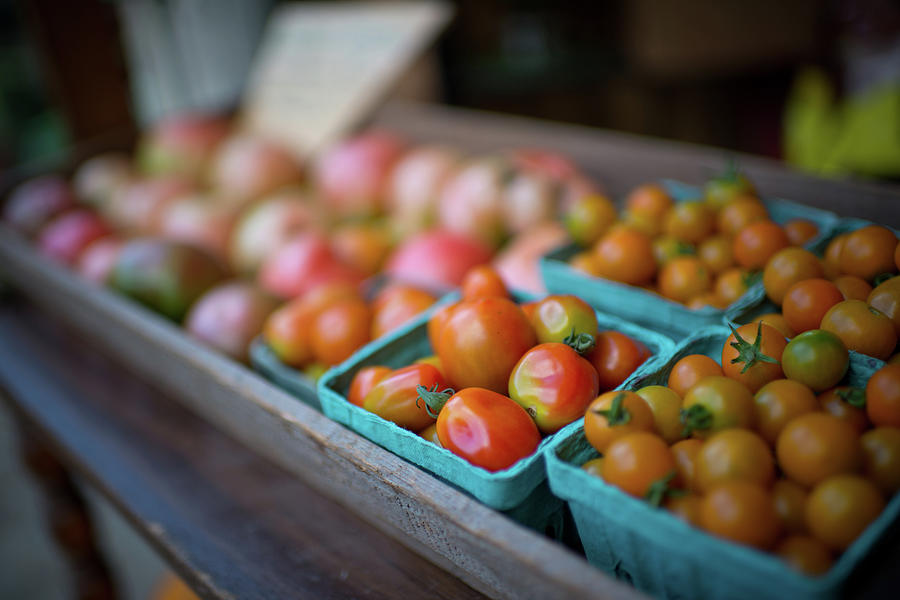 Fresh Organic Grape Tomatoes Photograph by Preappy