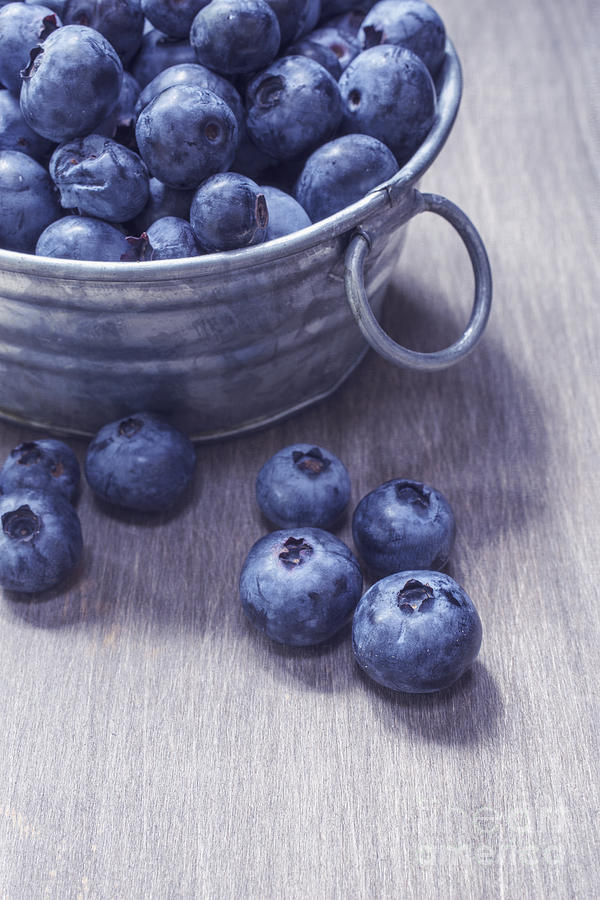 Blueberries Photograph - Fresh Picked Blueberries With Vintage Feel by Edward Fielding
