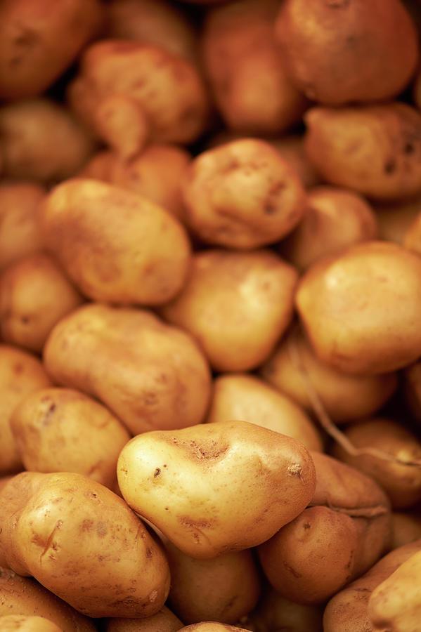Fresh Potatoes Photograph by Cameron Davidson