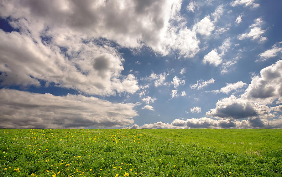 Fresh Summer Landscape Photograph by Ioan Panaite
