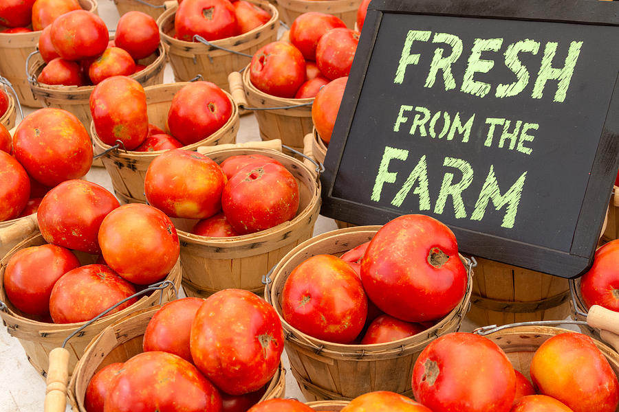 Brown Photograph - Fresh Tomatoes In Baskets At Farmers Market by Teri Virbickis