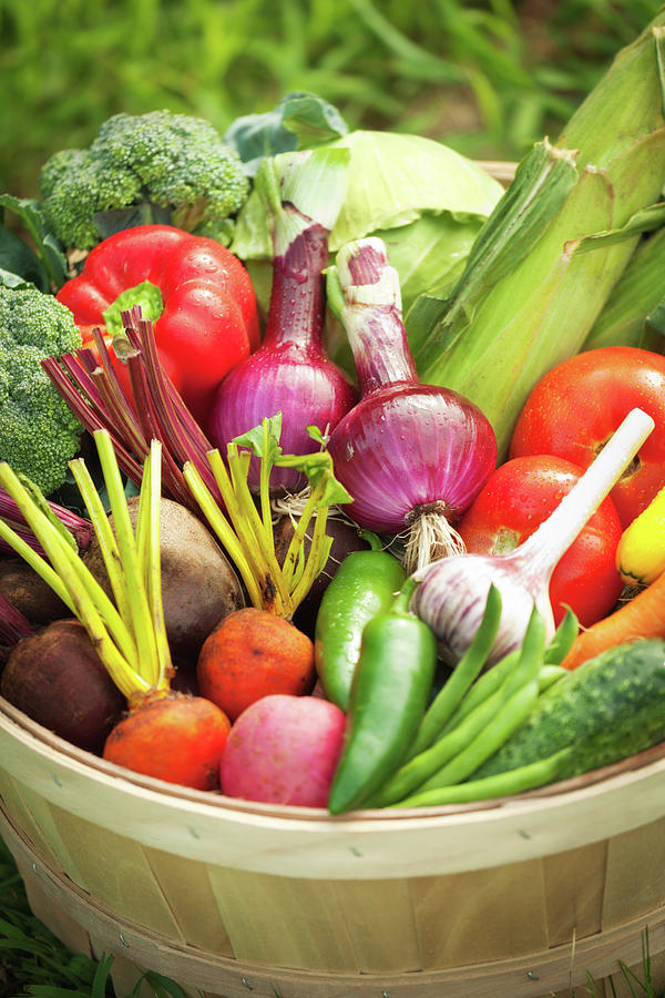 Freshly Harvested Variety Of Produce Photograph by Yinyang