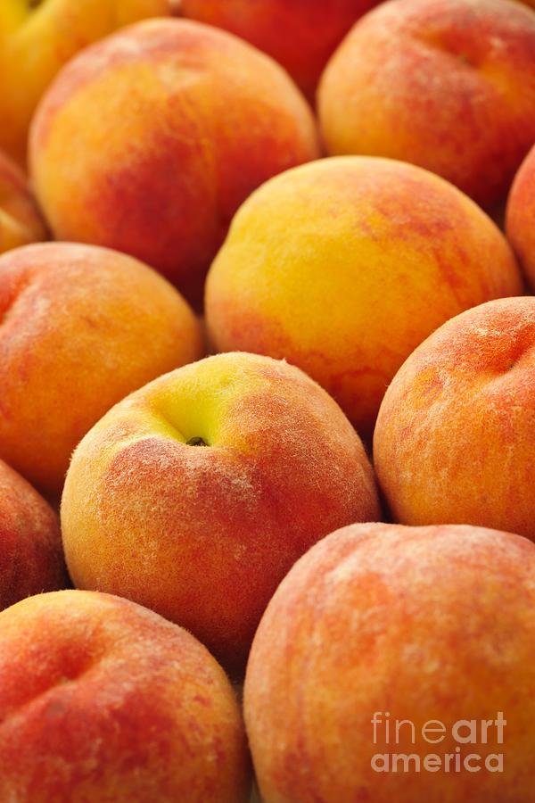 Peaches Photograph - Freshness Of Peaches by Elena Elisseeva