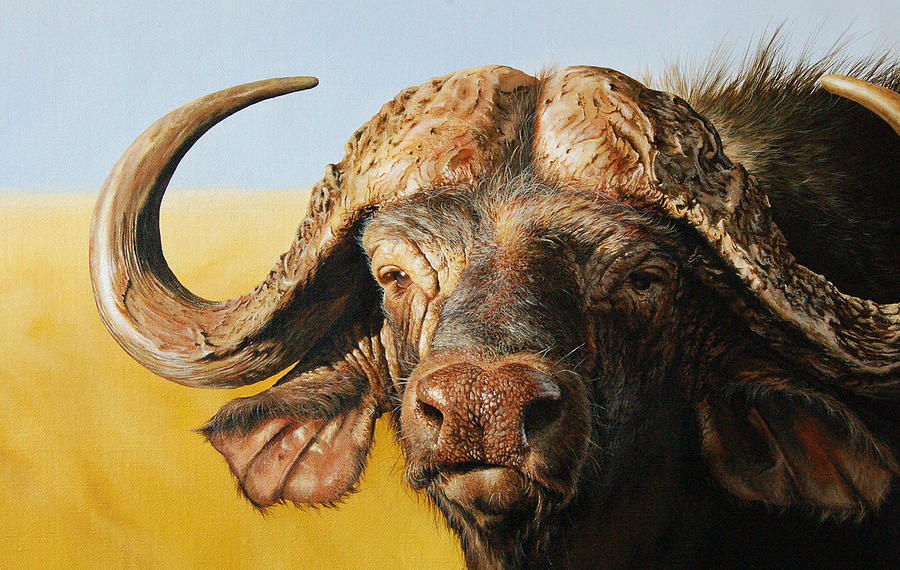 Buffalo Painting - African Buffalo by Mario Pichler