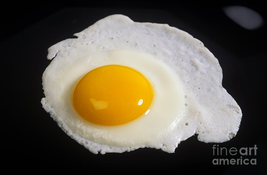 Egg Photograph - Fried Egg by Publiphoto