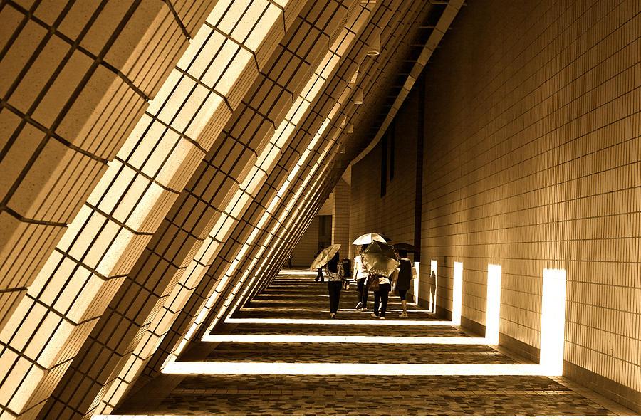 Hong Kong Photograph - Friendly Walk by Richard WAN
