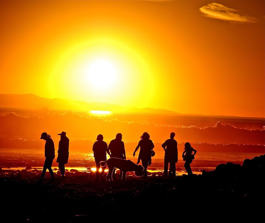 Sunset Photograph - Friends At Sunset by Liz Vernand