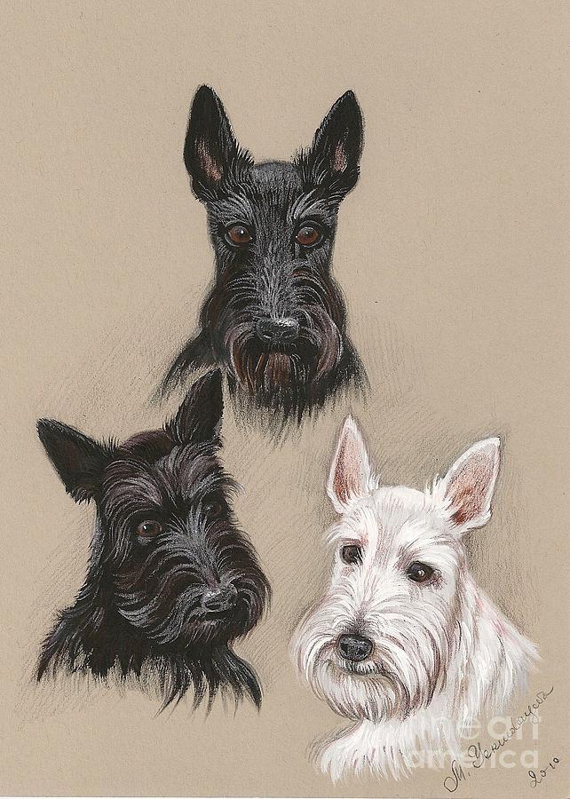 Scottish Terrier Painting - Friends by Margaryta Yermolayeva
