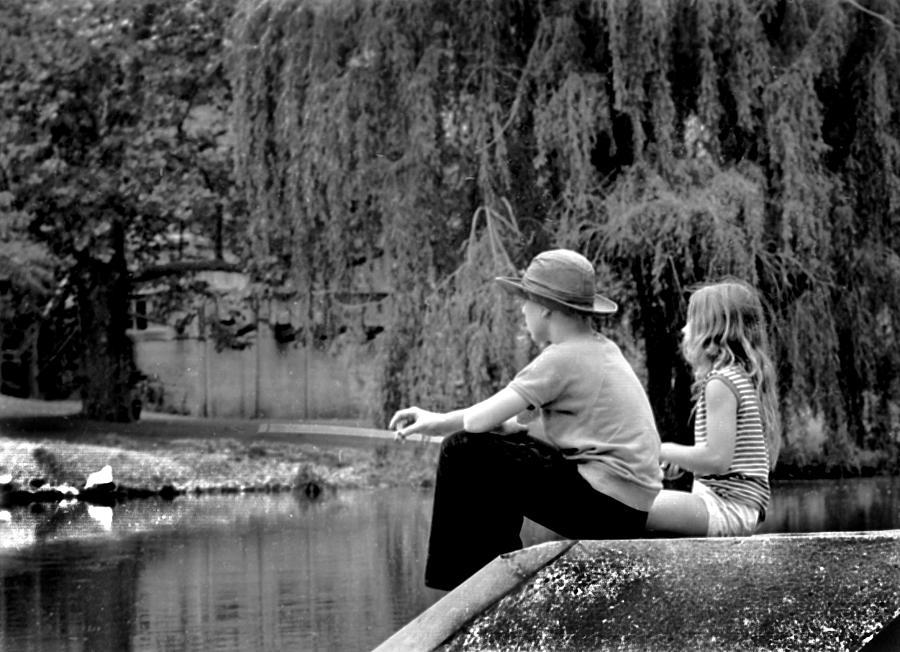 Friend Photograph - Friends by Mike Flynn