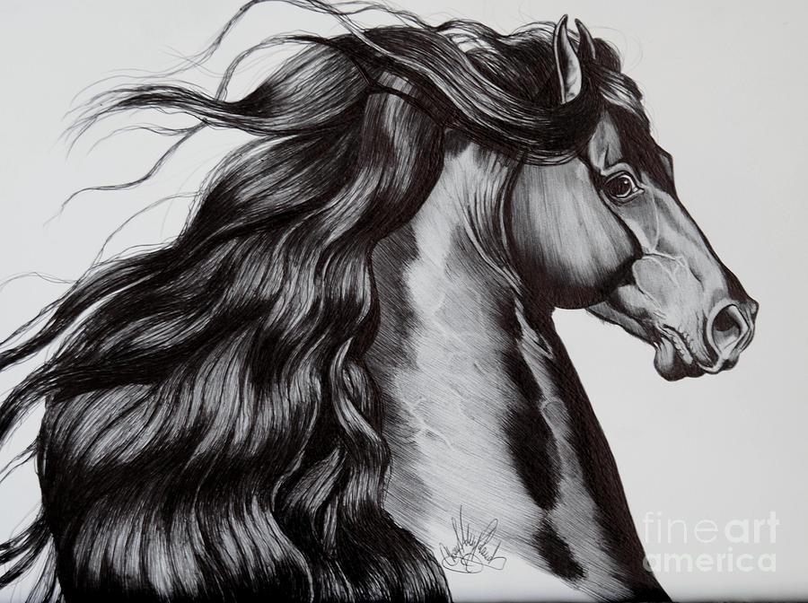 Horse Art Drawing - Friesian Head Shot by Cheryl Poland