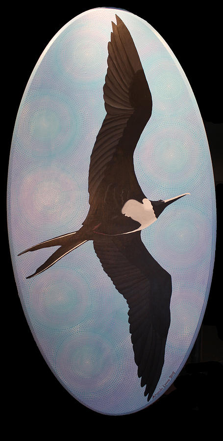 Frigate Bird by Amanda  Lynne