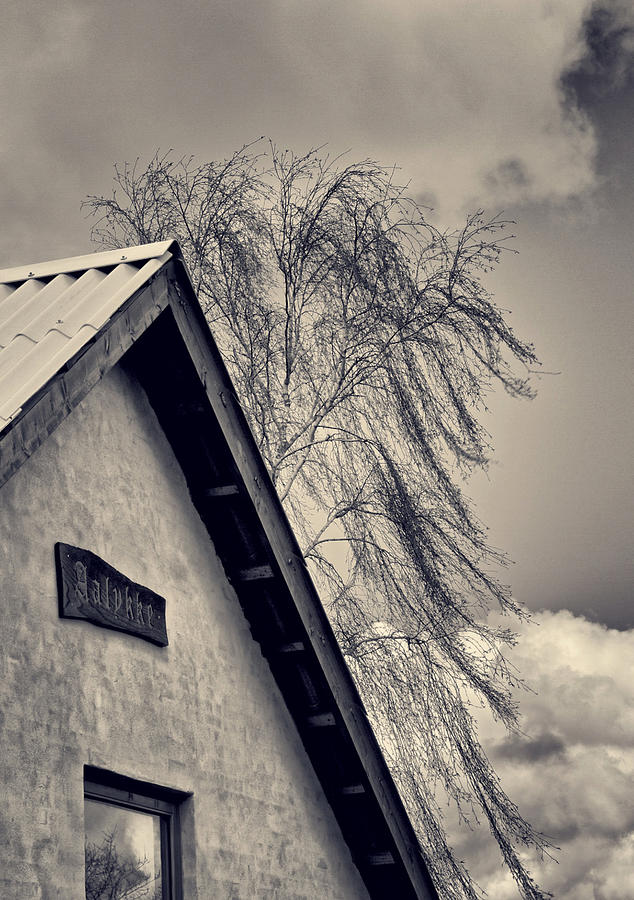 Fringe Photograph - Fringe by Odd Jeppesen
