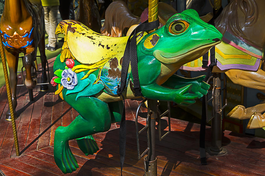 Frog Photograph - Frog Carrousel Ride by Garry Gay