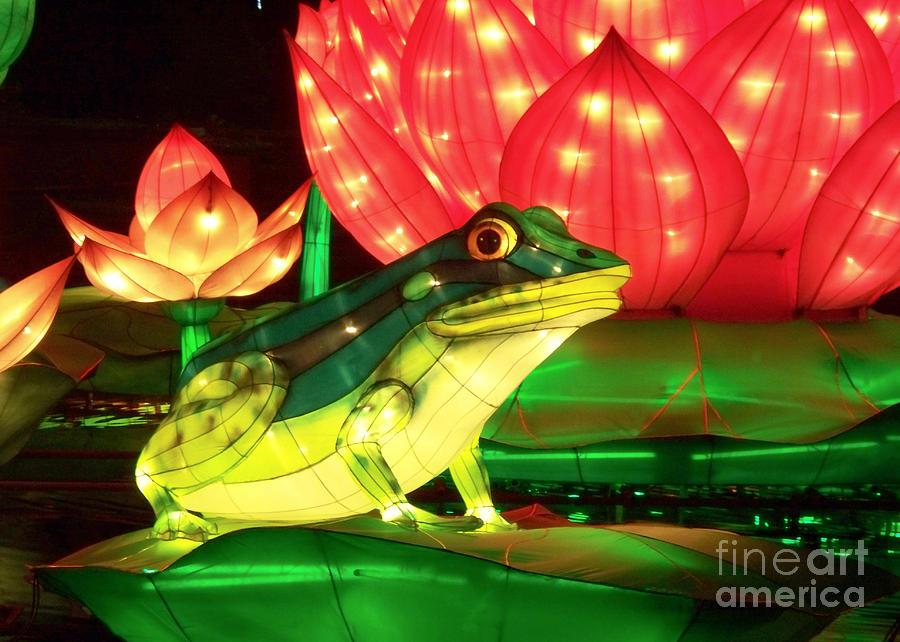 Chinese Lantern Festival Photograph - Frog Lantern by Cheryl McClure