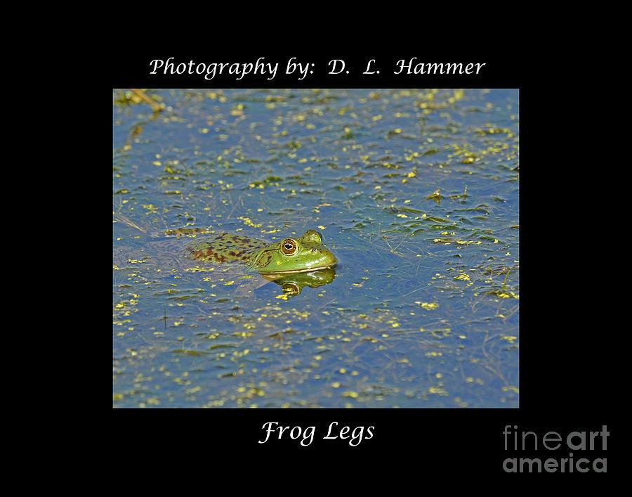 Wildlife Photograph - Frog Legs by Dennis Hammer