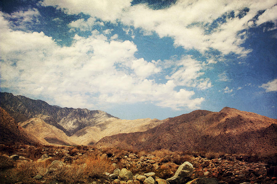 Palm Springs Photograph - From Day To Day by Laurie Search