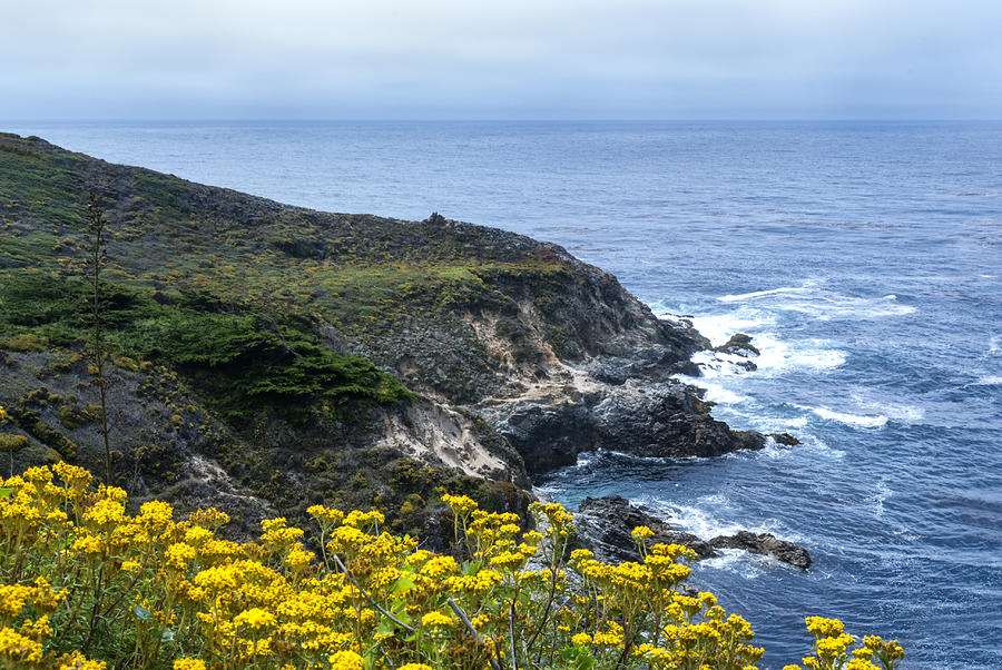 Big Sur Photograph - From The Cliffs Above by Anthony Citro