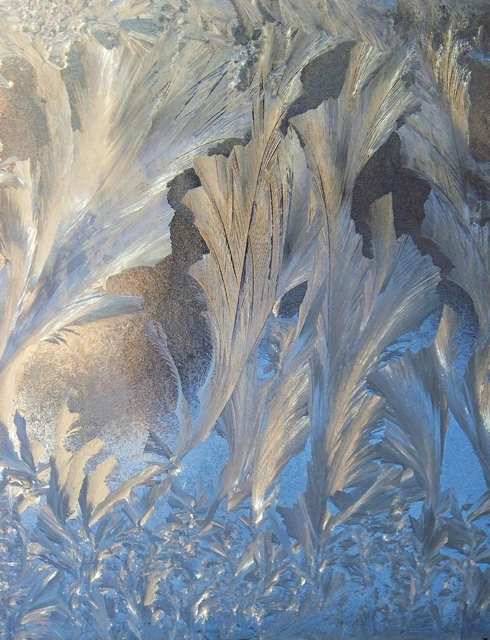 Frost Photograph - Frost On The Window Pane by Joy Nichols
