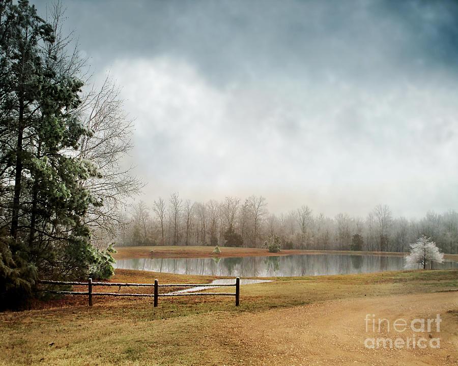 Winter Photograph - Frostbitten by Jai Johnson