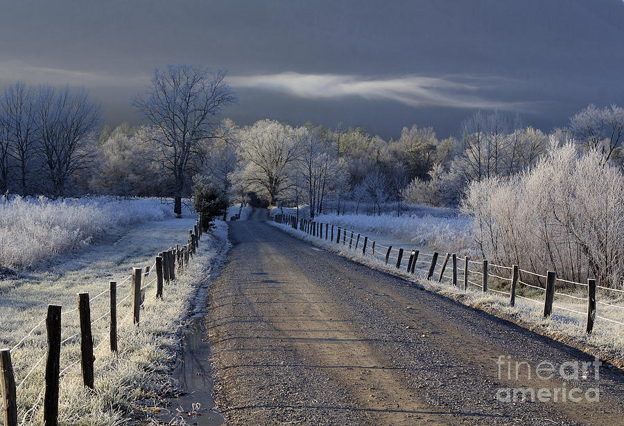 Fog Photograph - Frosty Cades Cove Hdr by Douglas Stucky