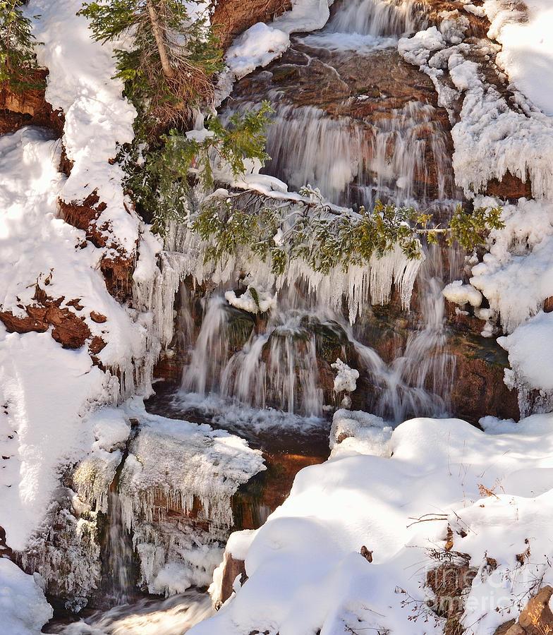 Cascade Photograph - Frosty Cascades by Kelly Black