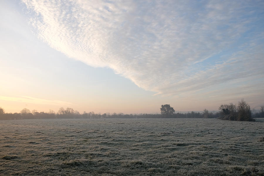 Fog Photograph - Frosty Field by Mark Severn